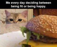 Fit Or Happy.jpg