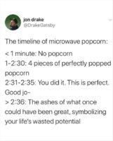 Popcorn Timer.jpg