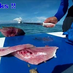 Solo Survival Fishing Miami to Bimini Trip - YouTube